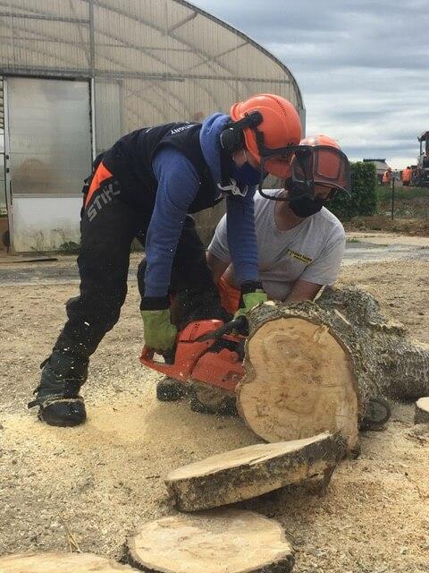 Journée « découvrir les métiers du bois »